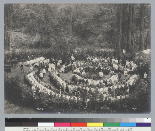 Bird's-eye view of members seated at tables in dining area, Bohemian Grove. [photographic print]