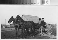 Harry F. Phillips and wife Mary Ann in horse-drawn buggy at the Phillips Ranch