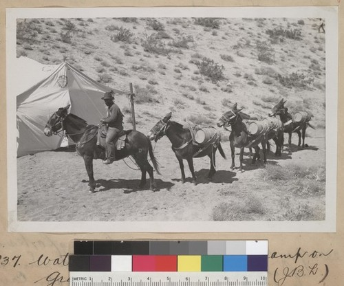 Water pack train to Saddle Camp on Gray Ridge
