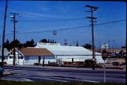 Columbo Lumber Company on South Main Street at Palm Avenue in Sebastopol, April, 1978