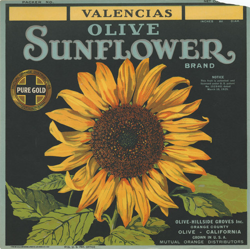 Crate label for Sunflower Brand Valencia oranges, Olive Hillside Groves Inc., Olive, California, 1925