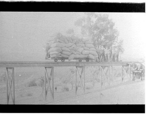 Men standing on a railroad trestle next to a rail car piled high with sacks of hops
