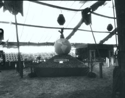 Gravenstein Apple Show, about 1930, with the Forestville display with a globe of the world setting on a pyramid of apples