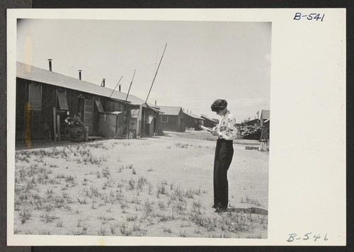 Gertrude Michaelove, member of the West Coast OWI office, takes field notes on living conditions at the Tule Lake Relocation Center. Photographer: Stewart, Francis Newell, California