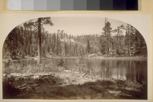 View of Mud Lake from Camp. 1881