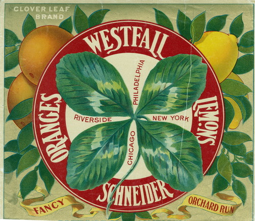 "Crate label, ""Clover Leaf Brand."" Westfall Schneider Oranges Lemons, Riverside Philadelphia, New York, Chicago"