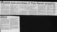 Borland eyes purchase of Polo Ranch property