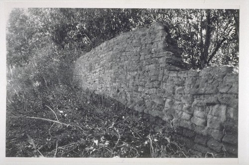 Section of old adobe wall surrounding orchard and fields at San Fernando Mission