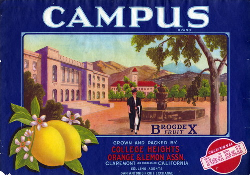 "Crate label, ""Campus Brand."" College Heights Orange & Lemon Assn"