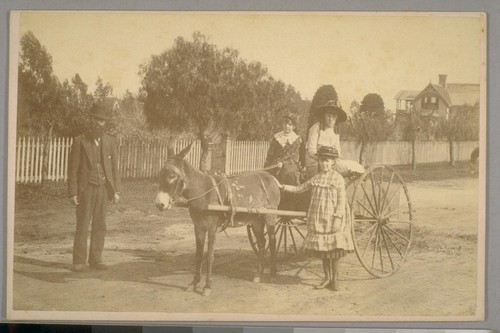 Donkey Cart, Santa Barbara, California, April 21st, 1884
