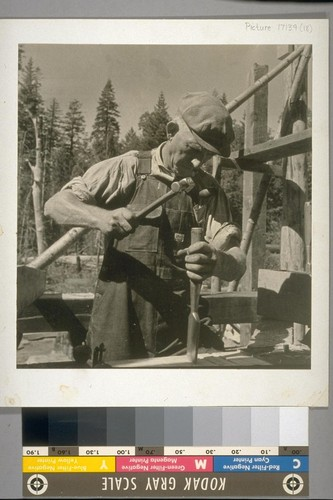 An unemployed cooperator at work on the saw mill