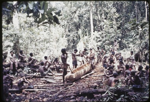Canoe-building: men hollow out a log as base for new canoe, many other men await their turn to assist
