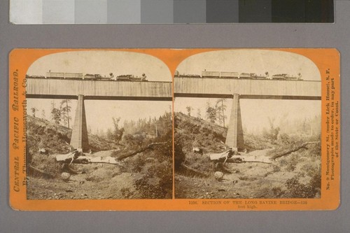 Section of the Long Ravine Bridge--120 feet high.--Photographer: Thomas Houseworth--Photographer's number: 1236--Place of Publication: San Francisco.--Photographer's series: Central Pacific Railroad