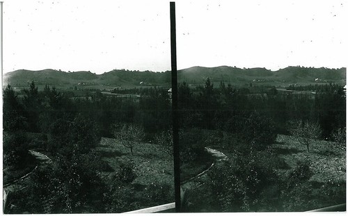 Early View of South Pasadena - Stereoview