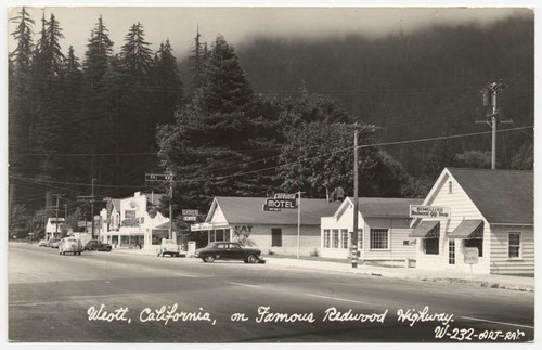 Weott California On Famous Redwood Highway