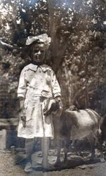 Alvina Amelia Smith Dohm Garceau with a goat on the T. R. Smith ranch west of Sebastopol about 1916