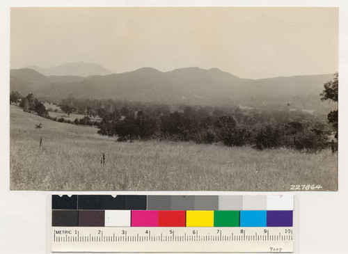 South of Kelseyville, Lake County. Looking northeast, Mt. Konocti in background. Foreground; cultivated, grassy woodland. Background: chamise, mixed brush, brushy woodland containing Douglas fir and western yellow pine