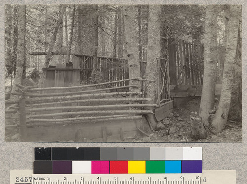 Corral for fawn captured by Graham and Maclay. Camp Califorest 1923