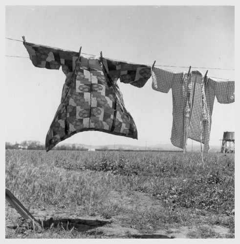 Wash-day 48 hours before evacuation of persons of Japanese ancestry from this farming community in Santa Clara County. Evacuees will be housed in War Relocation Authority centers for the duration. Photographer: Lange, Dorothea San Lorenzo, California