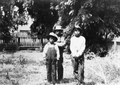 Boys on the Mechoopda Rancheria: Johnny Azbill Brady, Edward Wilson, and Ned Foreman