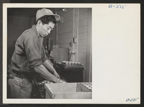 Ralph Iyemure, formerly a nursery man in Oakland, California, is shown here operating an egg sealing machine at Toner's Egg