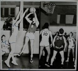 Analy High School Tigers basketball 1948--Analy vs Sonoma