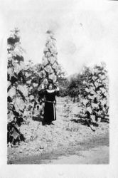 Blanche Riddell stands in front of large plants