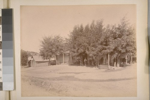 Friedberger's Store. Sheep Ranch (Calaveras Co.). [No.] 13