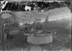 Gravenstein Apple Show exhibit circa 1915 in Sebastopol, showing various displays under the tent at the Apple Fair