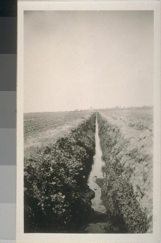 Snapshot of a ditch, location unknown