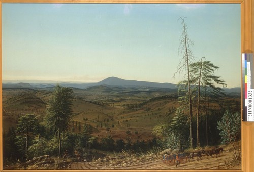 [Mokelumne Hill?, Calaveras County, California]