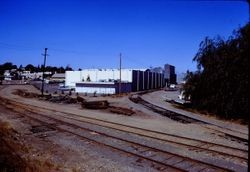 View northwest toward Petaluma Avenue along P&SR tracks with spur line behind Frizelle-Enos building, 1970