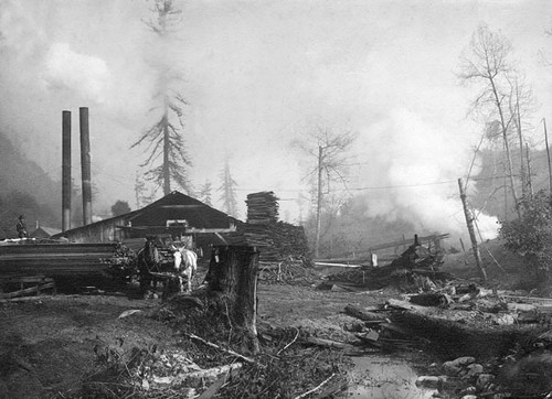 Sawmill at Granite Creek or Branciforte Creek