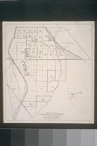 Subdivisional Plan - Durham State Land Settlement