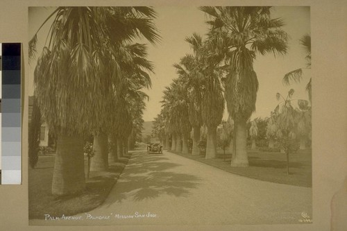 "Palm Avenue, ""Palmdale"", Mission San Jose"