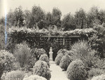 [James W. Heddens garden, Pasadena]