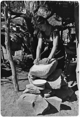 Grinding rock salt on a metate for cheese production at Rancho El Cerro