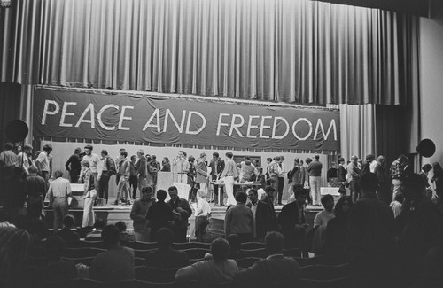 Calisphere Balloting At The Peace And Freedom Party State  Balloting At The Peace And Freedom Party State Convention When Eldridge  Cleaver Was Nominated For