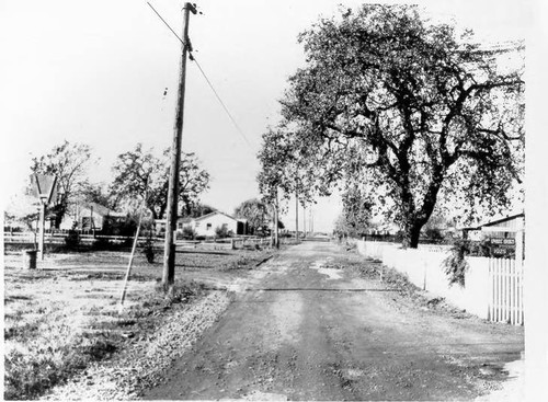 Looking west on Terry Road, Santa Rosa, California in 1967, from 1925 Terry