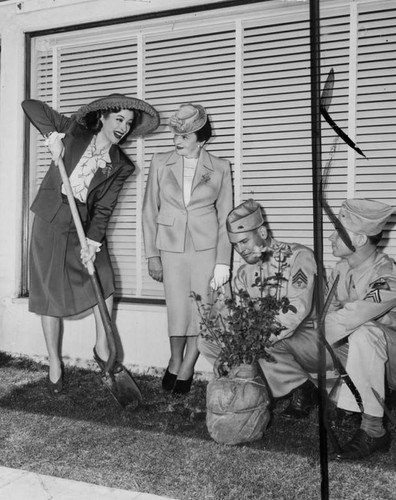 Greer Garson, planting Miniver rose bush