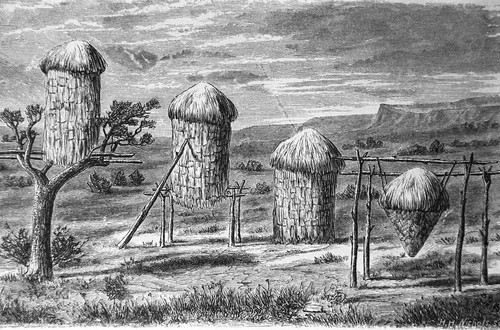 Acorn granaries at a Miwok village