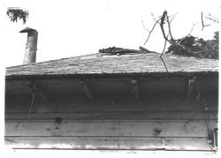 Luther Burbank cottage in 1978 before renovations began