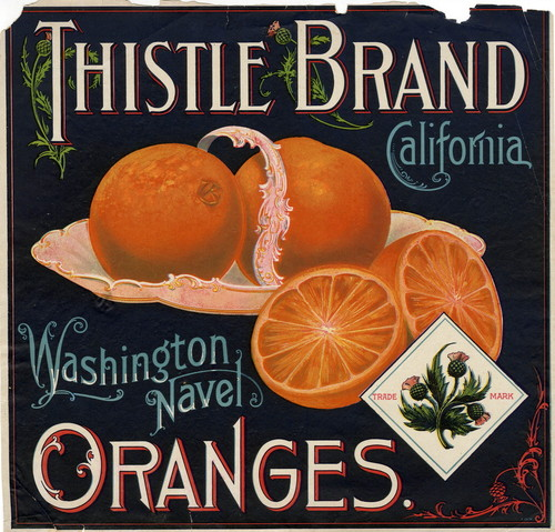 "Crate label, ""Thistle Brand."" Washington Navel Oranges. California"