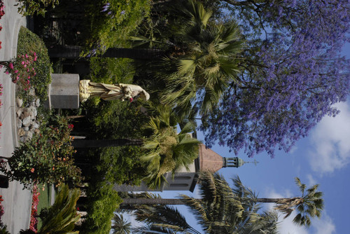 Mission Gardens, Campus Exterior, Statue Of Christ, Jacaranda Tree, Mission