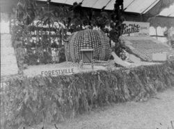 about 1930 Gravenstein Apple Show display of an huge apple, made of apples for the town of Forestville exhibit
