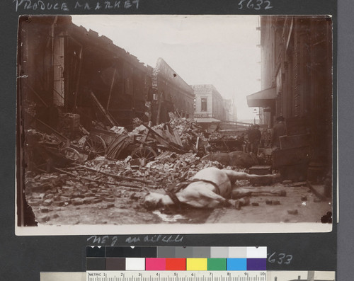 Produce Market. [Actually, fish market section of Merchant St. Dead horse among rubble.]