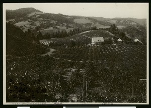 Panoramic view of a home and surrounding hills, ca.1900