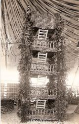1915 Gravenstein Apple Show display of Camp Meeker Living Tower