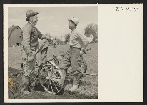 E. M. Cox and Nogi Asakawa stopped plowing a Caucasian neighbor's field long enough to pose for their pictures. Formerly