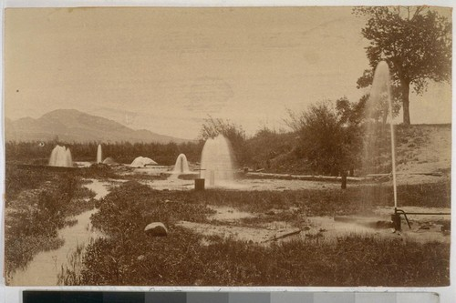 Artesian Wells--San Bernardino--supplying Gage Canal. H.B. Wesner photo